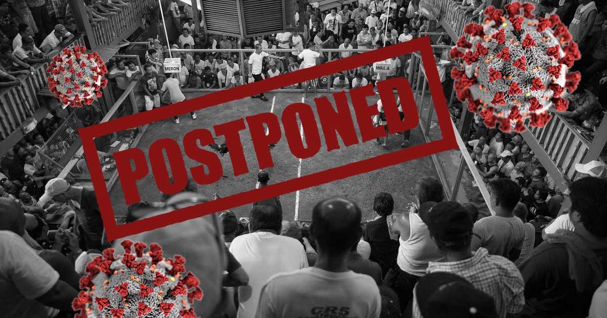Sabung Ayam di Filipina Terpaksa Libur Pasca Wabah Corona